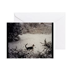 KITTY'S FIRST SNOW Greeting Cards (Pk of 20)