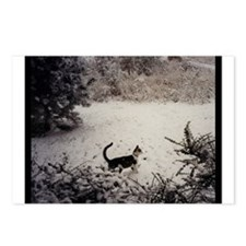 KITTY'S FIRST SNOW Postcards (Package of 8)