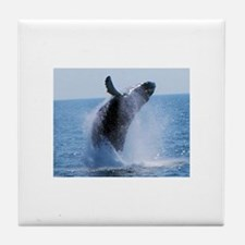 whale jumping Tile Coaster