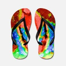 A Touch Of Color Flip Flops