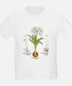 Vintage Flowers by Basi Women's Cap Sleeve T-Shirt