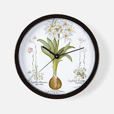 Vintage Flowers by Basilius Besler Wall Clock
