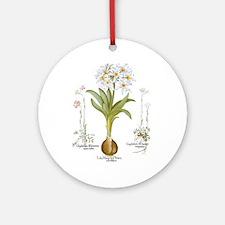 Vintage Flowers by Basilius Besle Ornament (Round)