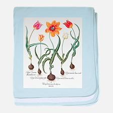 Vintage Tulips by Basilius Besler baby blanket