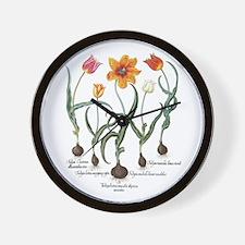 Vintage Tulips by Basilius Besler Wall Clock