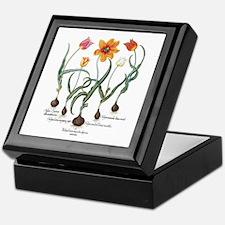 Vintage Tulips by Basilius Besler Keepsake Box