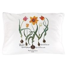 Vintage Tulips by Basilius Besler Pillow Case