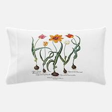 Vintage Tulips by Basilius Besler Pillow Case