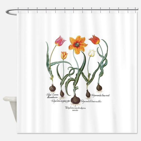 Vintage Tulips by Basilius Besler Shower Curtain