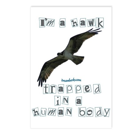 I'm a Hawk Postcards (Package of 8)