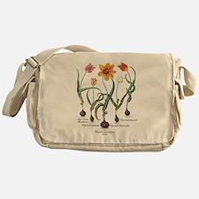 Vintage Tulips by Basilius Besler Messenger Bag