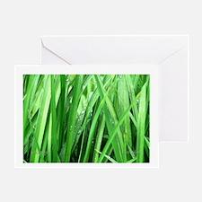 Grass Jungle... Greeting Card