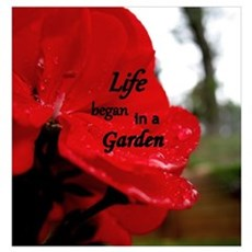 Life Began in a Garden Poster