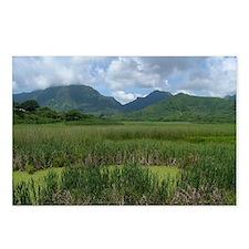 Kawainui Marsh Postcards (Pkg of 8)