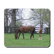 Bluegrass Blue Bloods Mousepad