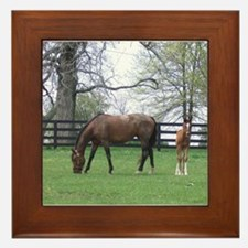 Bluegrass Blue Bloods Framed Tile