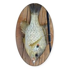 Shell Cracker. Red Ear Fish Retro T Decal