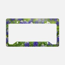 Deep Blue Bluebonnets License Plate Holder