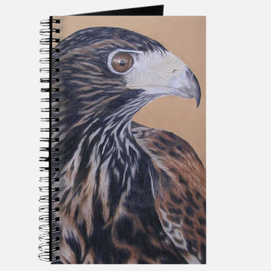 Immature Harris Hawk Journal