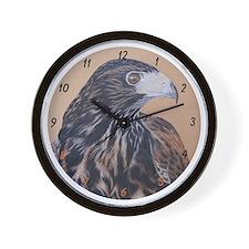 Immature Harris Hawk Wall Clock