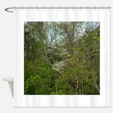 Dogwoods Bloom. Flowering Tree Fish Shower Curtain