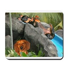 Lily Water Slides Dachshunds Mousepad