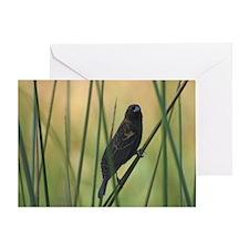 Quiet Bird Greeting Card