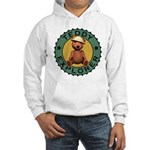 Teddy Bear Explorer Hooded Sweatshirt