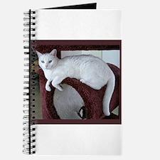 TURKISH VAN CAT Journal
