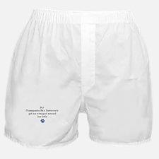 Wrapped Around Her Paw (Chesapeake) Boxer Shorts