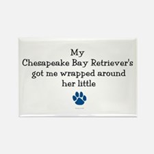 Wrapped Around Her Paw (Chesapeake) Rectangle Magn