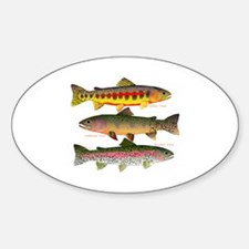 3 Western Trout Decal