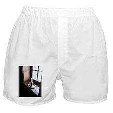 Cute Candles Boxer Shorts