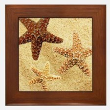 Starfish Framed Tile
