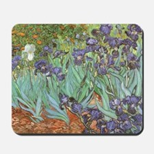 Van Gogh Irises, Vintage Post Impression Mousepad