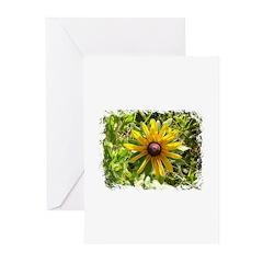 WILD DAISY FLOWER BIBLE VERSE Cards (Pk of 10)