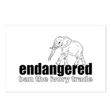 Endangered Elephant Postcards (Package of 8)