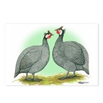 French Guineafowl Postcards (Package of 8)
