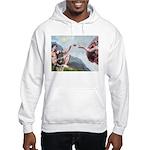 Creation / G-Shep Hooded Sweatshirt