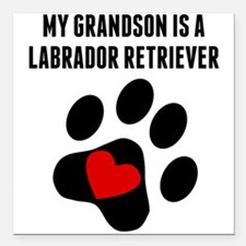 My Grandson Is A Labrador Retriever Square Car Mag