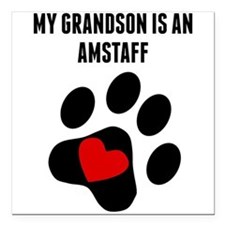 """My Grandson Is An AmStaff Square Car Magnet 3"""" x 3"""