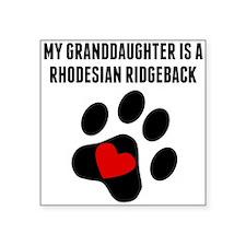 My Granddaughter Is A Rhodesian Ridgeback Sticker