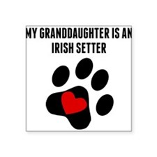 My Granddaughter Is An Irish Setter Sticker