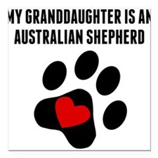 My Granddaughter Is An Australian Shepherd Square
