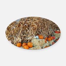 Cute Halloween themes Oval Car Magnet