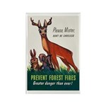 Prevent Forest Fires Rectangle Magnet