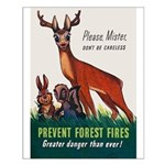 Prevent Forest Fires Small Poster