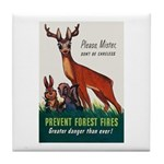 Prevent Forest Fires Tile Coaster