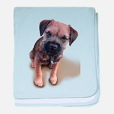 Border Terrier Boy baby blanket