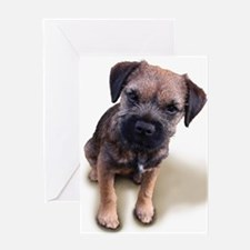 Border Terrier Boy Greeting Card